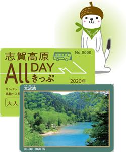 大人カード(表裏).png